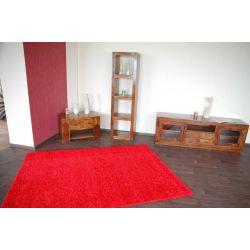 Teppich SHAGGY Modell 100 R