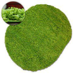 Teppich oval SHAGGY GALAXY 9000 grün